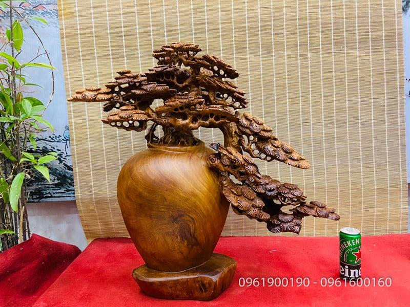 bonsai cây tùng gỗ ngọc am